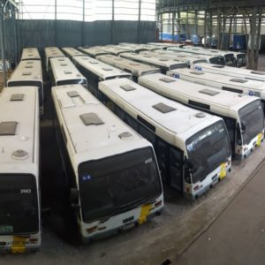 54 City busses For Sale